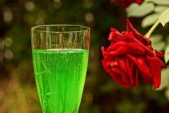 与一份绿色饮料的玻璃在一朵红色玫瑰的芽 免版税库存照片