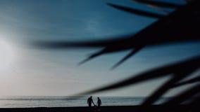 与一儿童立场的家庭反对日落海海滩和棕榈 热带假期概念 ?? 免版税图库摄影