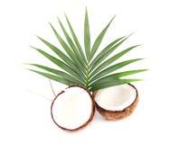 与一半的在白色背景的椰子和叶子 特写镜头 免版税库存图片
