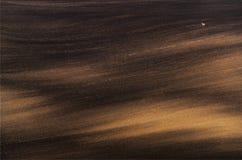 与一只孤独的母鹿的风景 免版税库存图片