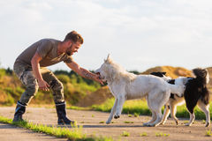 与一只白德国牧羊犬的人戏剧 免版税库存图片