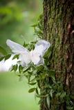 与一只鞋带蝴蝶的婚礼装饰在树 免版税图库摄影