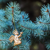与一只鸟的金黄天使在蓝色云杉 安置文本 元素圣诞节设计 库存照片