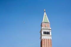 与一只鸟的钟楼在圣马克广场,威尼斯,在蓝天背景的拷贝空间 免版税库存照片