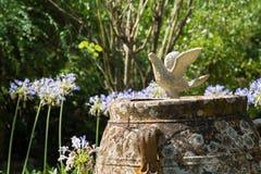 与一只鸽子的庭院装饰在英国公墓在科孚岛 库存照片