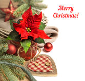 与一品红和冬天装饰,文本sp的圣诞节边界 库存照片