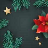 与一品红和冷杉分支的圣诞节横幅 免版税库存照片