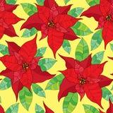 与一品红花或圣诞节星的无缝的样式在与绿色叶子的红色 传统圣诞节标志 库存图片