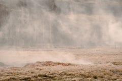 与一场神秘的雾的有薄雾的领域 库存照片