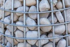 与一块石头的Gabion种植的园林植物特写镜头 风景设计的概念 库存图片