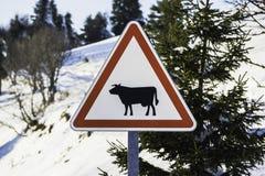 与一头被设计的黑母牛的警报信号 免版税库存图片