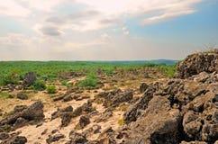 与一座小山的一个开放平原在距离,报道用石头和沙子、小草和灌木 全景石谷 免版税图库摄影