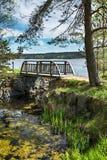 与一座桥梁的风景风景在湖的岸的一个公园 免版税库存照片
