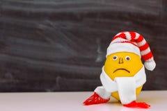 与一张哀伤的面孔的柠檬在帽子和围巾 库存照片