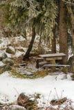 与一张野餐桌和长凳的美好的冬天在雪在卡扎克斯坦 图库摄影