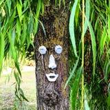与一张滑稽的面孔的树 库存照片