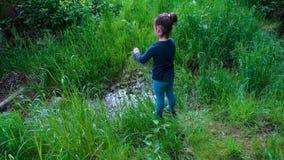 与一把刀子的女孩playin本质上,剪草成一条小小河在森林,oudoor生存刀子,工具 影视素材