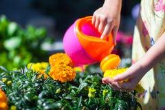 与一把喷壶的女孩浇灌的花 图库摄影