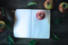 与一本书的苹果在木背景 库存照片