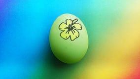 与一朵手拉的夏威夷花的生物有机绿色黄色复活节彩蛋在蓝色绿松石苹果绿的彩虹背景 免版税库存图片