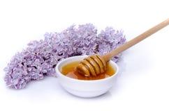 与一朵淡紫色花的蜂蜜 库存照片