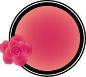 与一朵玫瑰的框架在文本下 免版税库存照片