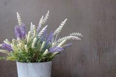 与一朵白色和蓝色花的篮子对灰色墙壁 免版税库存照片