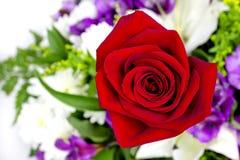 与一朵红色玫瑰的花束 免版税库存照片