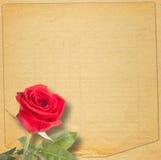 与一朵美丽的红色玫瑰的老葡萄酒卡片在纸 免版税库存图片