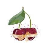 与一朵花的樱桃在爱 图库摄影
