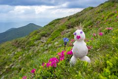 与一朵花的雪人在一个开花的高山草甸 库存图片