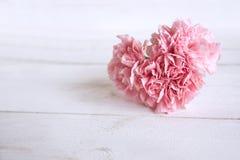 与一朵花的静物画在心脏形状 库存图片