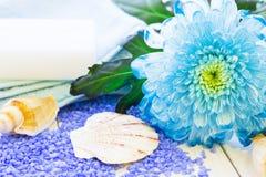 与一朵蓝色花的温泉概念 库存图片