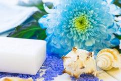 与一朵蓝色花的温泉概念 图库摄影