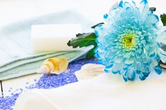 与一朵蓝色花的温泉概念 免版税库存图片