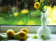 与一朵黄色玫瑰和柠檬的静物画 图库摄影