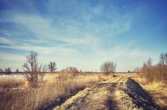 与一条人行道的农村冬天风景 库存照片