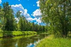 与一条小河的夏天风景 库存图片