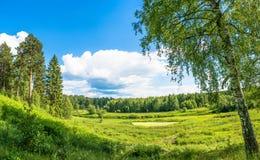 与一条小河的美好的夏天风景 图库摄影