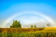 与一条有薄雾的彩虹的美好的早晨 免版税库存图片