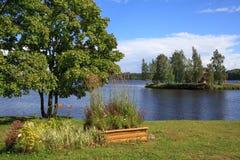 与一条河和花的美好的夏天风景在岸 库存图片