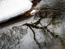 与一条河的春天风景在卡卢加州地区(俄罗斯) 免版税图库摄影