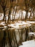 与一条河的春天风景在卡卢加州地区(俄罗斯) 库存照片