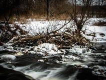 与一条河的春天风景在卡卢加州地区(俄罗斯) 图库摄影