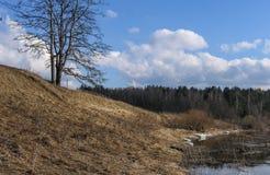 与一条河的风景在中央俄罗斯 免版税图库摄影