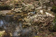 与一条河的风景风景七春天的在罗得岛 免版税库存照片