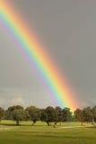 与一条美丽的彩虹的风景 免版税库存图片