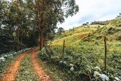 与一条路和小山的农村风景在subtropics 图库摄影