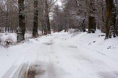 与一条路的冬天风景通过森林 库存照片