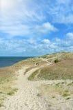 与一条道路在干草和蓝色波罗的海的美丽的沙丘背景的在晴朗的夏日 库存图片